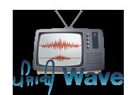 PanjabiWave Logo